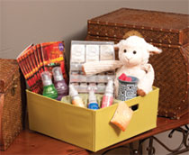 Host a Scentsy Party 1