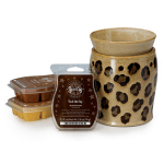 Scentsy Deluxe system
