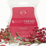 ScenTrend by Scentsy
