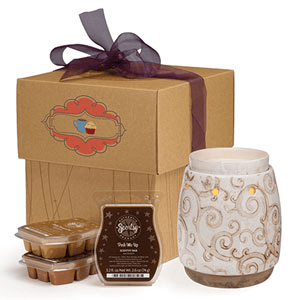 scentsy gift bundle