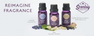 Scentsy Essential Oil Frequently Asked Questions